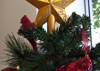 , Home, Christmas Tree Hire