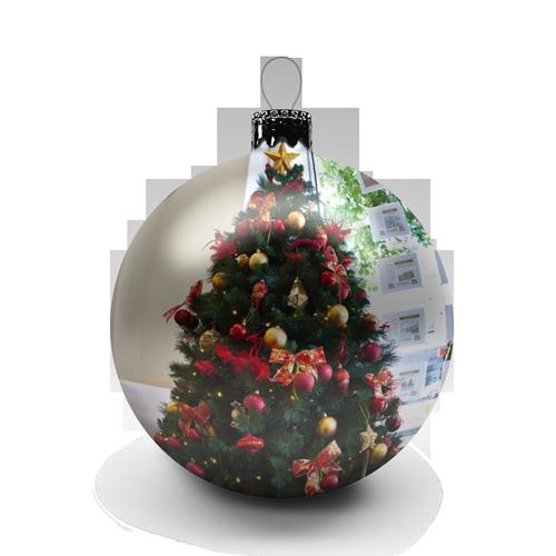 , Tree Selection, Christmas Tree Hire