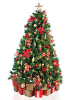 Christmas Tree with Red and Gold Decorations