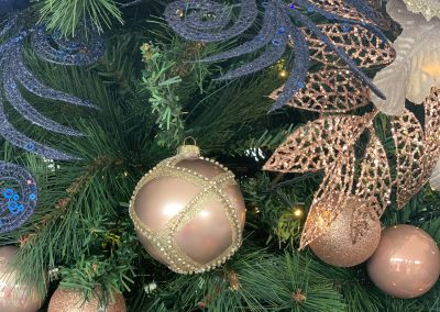 , Client Gallery, Christmas Tree Hire